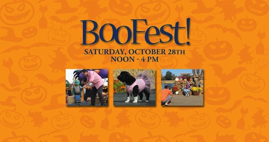 BooFest at Barefoot Landing