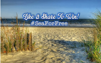 #SeaForFree contest winner announced